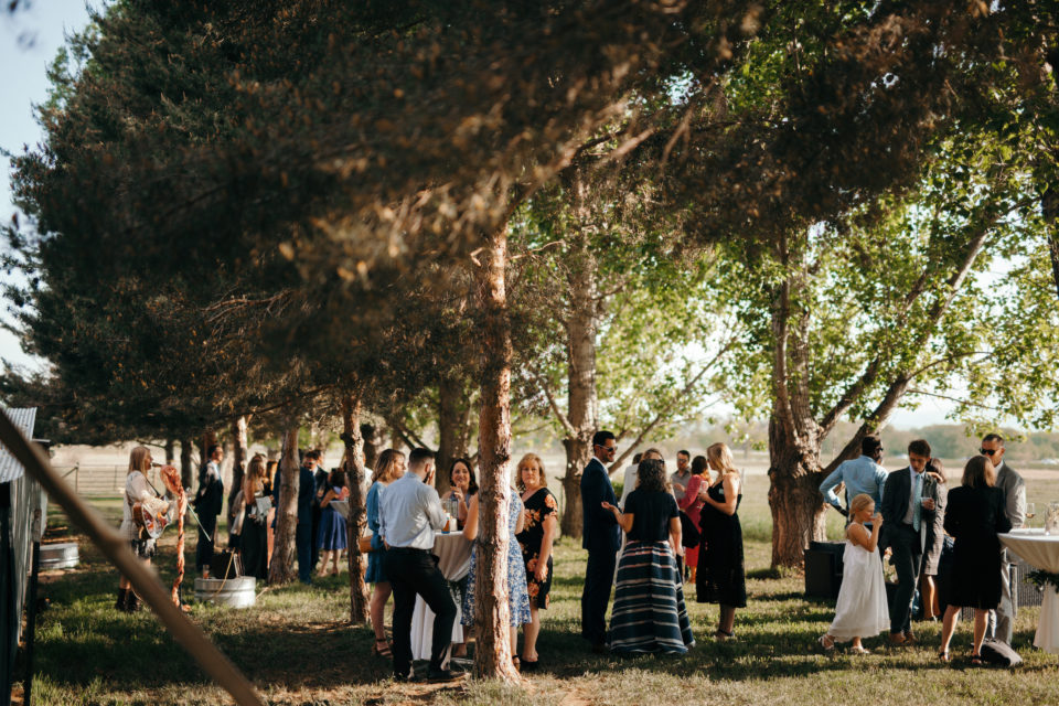cocktail hour reception colorado summer farm wedding